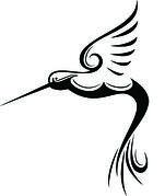 hummingbird_vector