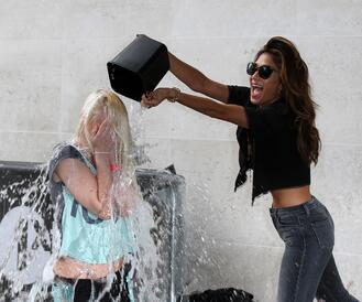 what you can learn from the ice bucket challenge
