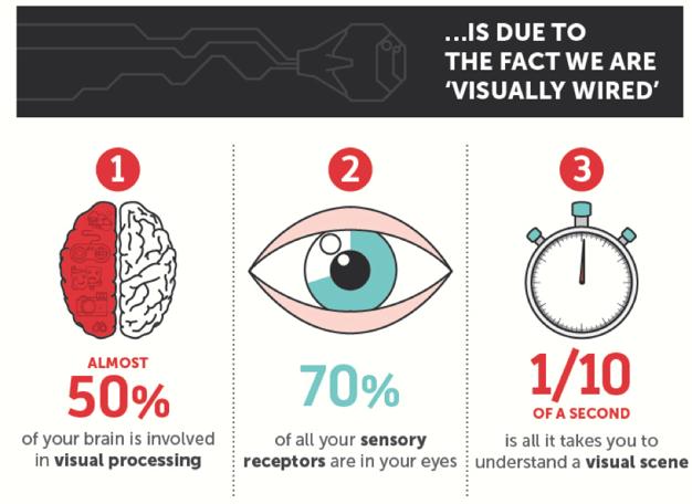 visual-processing-image